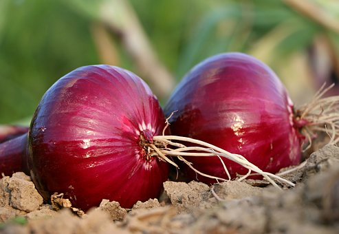Vegetables: Onions - Red (1 kg)